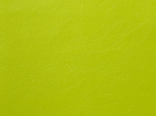 Aqua Marine Lime