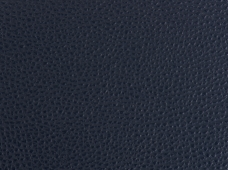 Caravelle Dark Blue