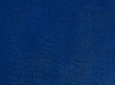 Clasico Royal Blue