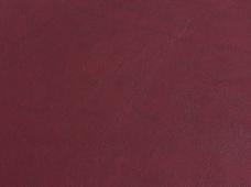 Cordoba Burgundy Print
