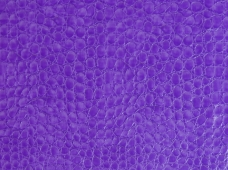 Crocco (Unsupported) Purple