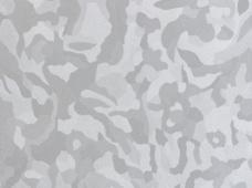 Dazzel Silver
