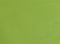 Galaxy Lime