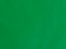 Greenland K. Green