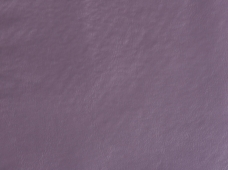 Greenland Lavender