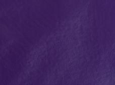 Greenland Purple