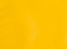 Greenland Yellow
