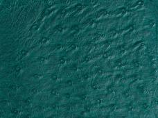 Ostrich Green