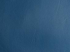 Promotional D. Blue