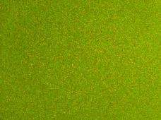 Sparkel Kiwi