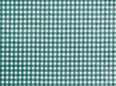 Tablecloth Gingham Check Green