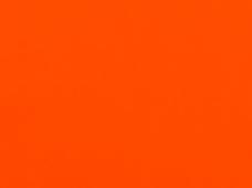Wet Look Orange